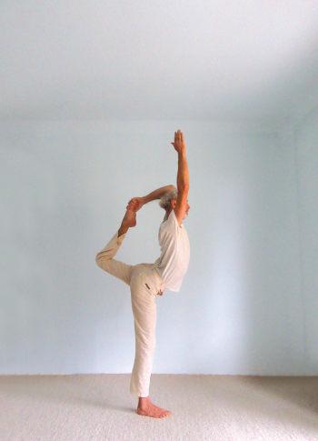 Natarajasana Der Tanzer Beitrage Zu Einem Neuen Yogawillen